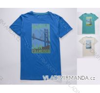 Tričko krátký rukáv dorostenecké chlapecké (134-164) WOLF S2803