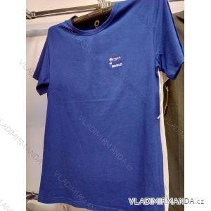 Tričko krátký rukáv pánské (m-2xl) DANTONY TMT119002