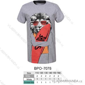 Tričko krátký rukáv dětské dorost chlapecké (110-160) GLO-STORY BPO-7078