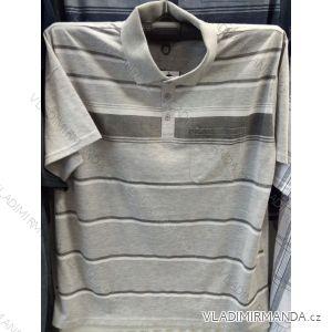 Tričko s límečkem krátký rukáv pánské nadrozměrné (l-4xl) BATY BAT19PNAM-SOC-CHAM